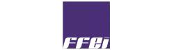 FFEI_int